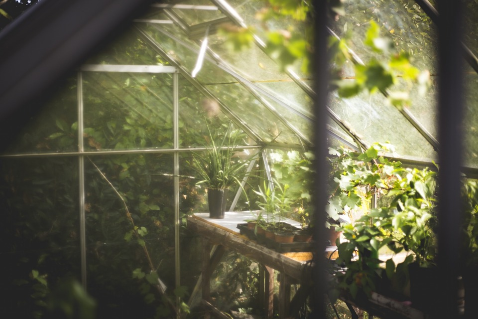 Bien choisir sa serre de jardin | Bricolage.fm:guide du ...